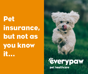 PET CHECK UK - Banner - Everypaw Pet Insurance