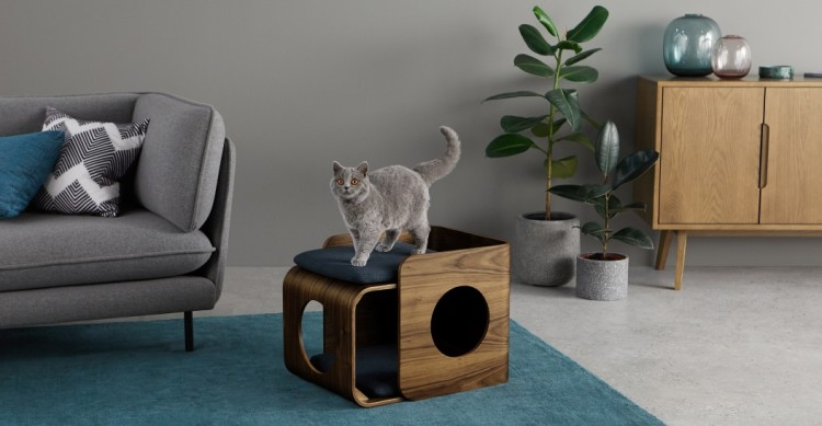 PET CHECK UK Cat bed by MADE with Kyla the cat modelling