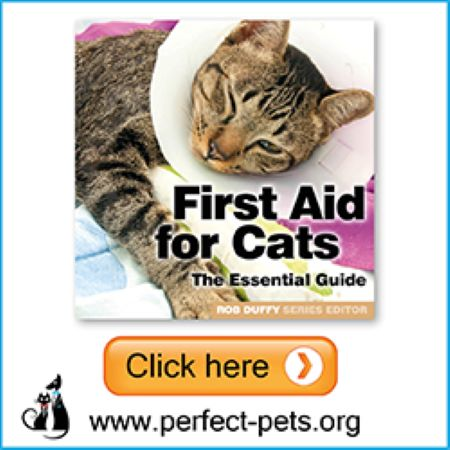PET CHECK BLOG Perfect Pets Banner First Aid for Cats Book
