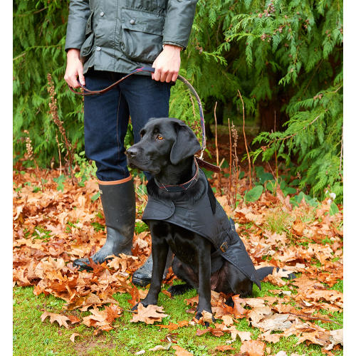 PET CHECK UK Quilted Dog Coat In Black by Barbour