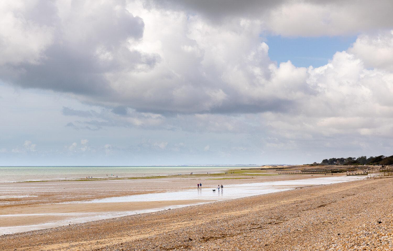 PET CHECK UK Beach West of Littlehampton
