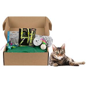 PET CHECK UK Pets At Home Cat Treat Box