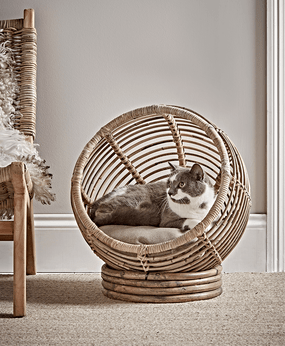 PETCHECK UK Cox and Cox cat in cat bed