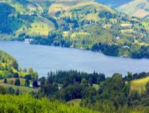 PET CHECK UK Windermere Lake District
