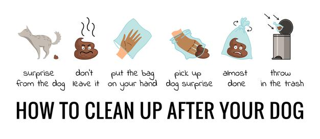 PET CHECK UK Dog clean up info