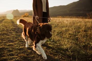 PET CHECK UK - Dog Walking - Woman walking dog