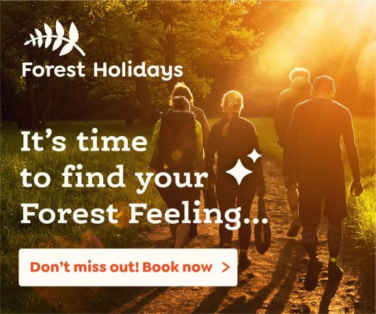 PET CHECK UK Forest Holidays Banner People walking