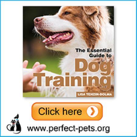 PET CHECK BLOG Perfect Pets Banner Dog Training Book