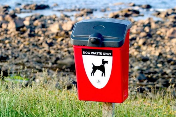 PET CHECK UK Dog poop waste bin at beach
