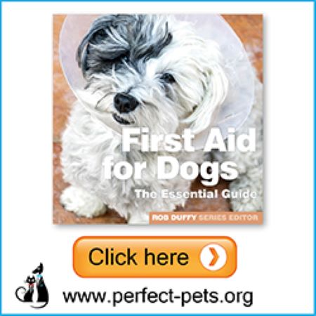 PET CHECK BLOG Perfect Pets Banner First Aid for Dogs Book