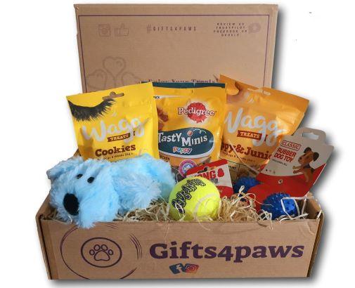 PET CHECK UK Gifts 4 Paws Box