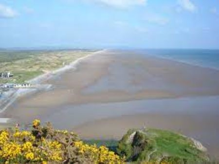PET CHECK UK Pendine Sands Wales