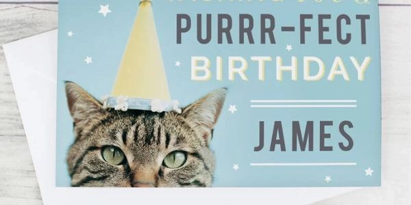 PET CHECK UK, Prezzybox, Personalised Cat cards