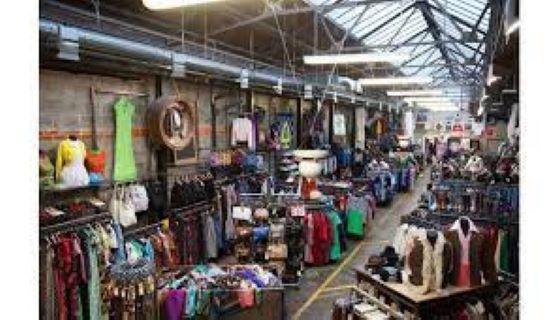 PET CHECK UK Beyond Retro Shop of Brighton East Sussex
