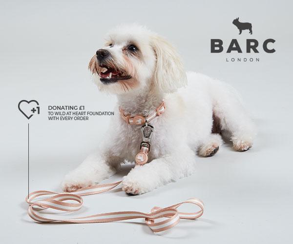 Barc Vegan accessories