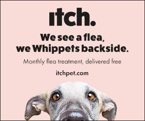 PET CHECK UK, itchpet.com banner