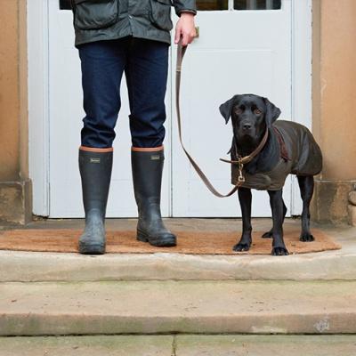 PET CHECK UK - Dog walking - Labrador dog on lead and wearing dog coat with walker